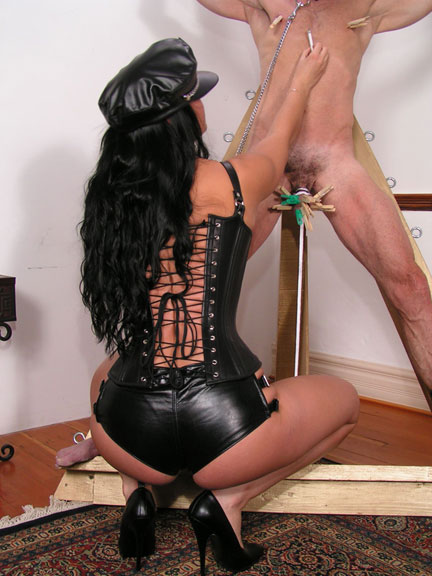 Leather, BBT and ballbusting gallery
